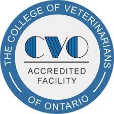 CVO-ottawa